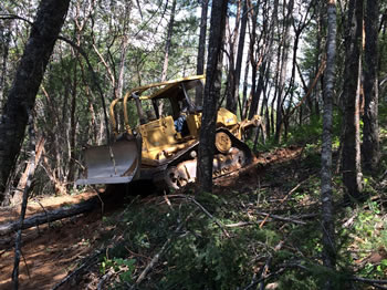 Logging with Dozer